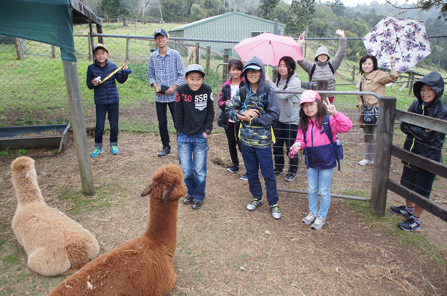 オーストラリア現地州立校&ホームステイ体験留学ツアー 2016年8月15日