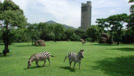 2019年度遠足 豊橋総合動植物公園